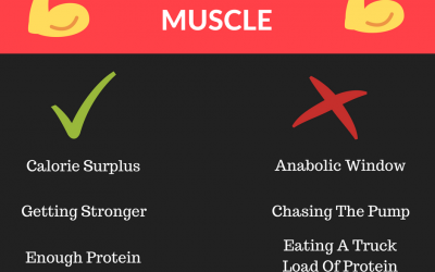 How To Gain Muscle